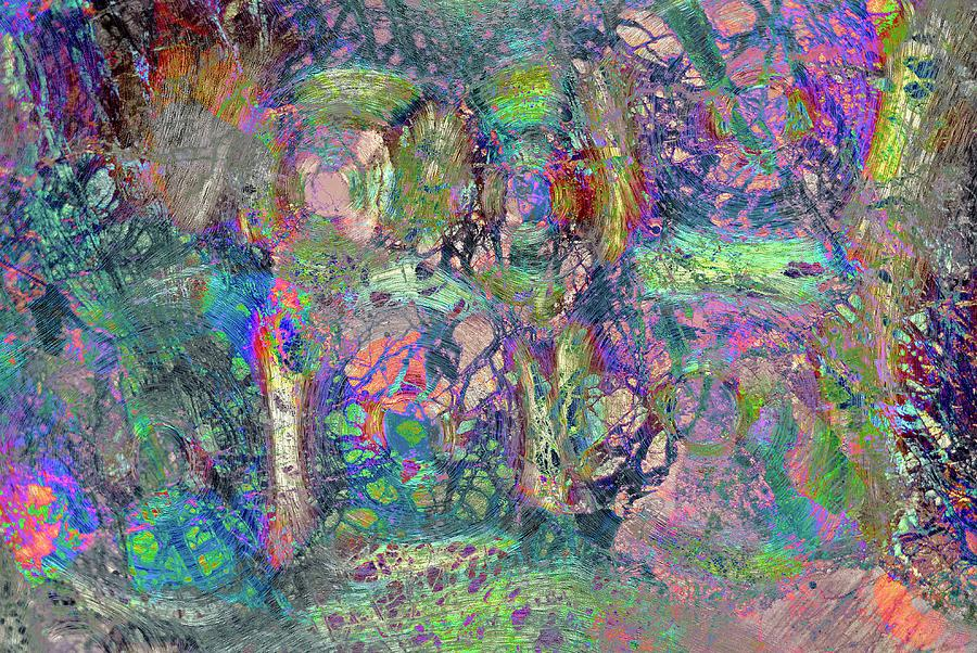 Abstract Photograph - Abstract Polarised Light Micrographs by Steve Lowry