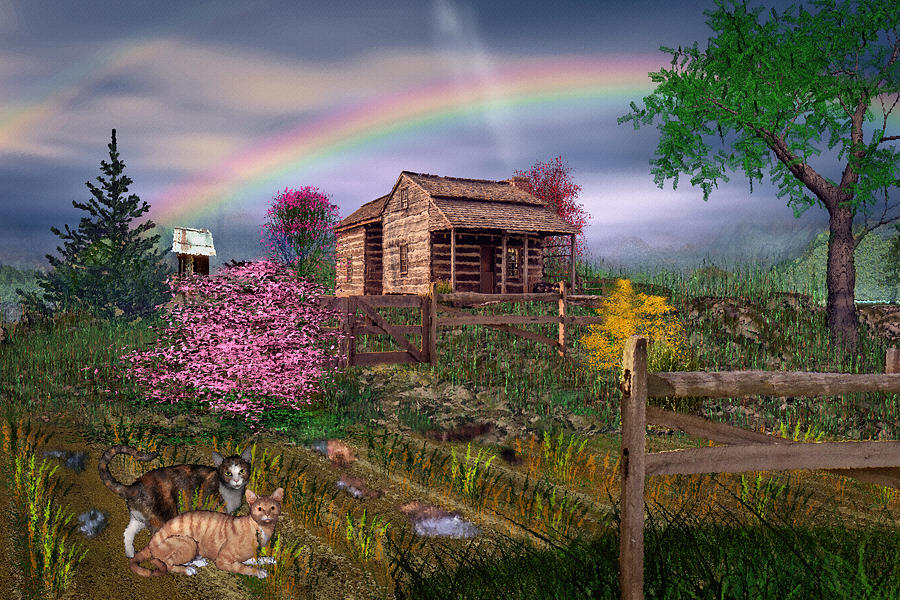 Country Scene Photograph - After The Storm by Mary Almond