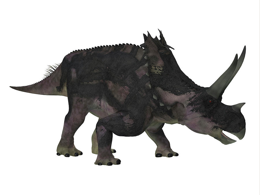 1-agujaceratops-dinosaur-side-profile-co