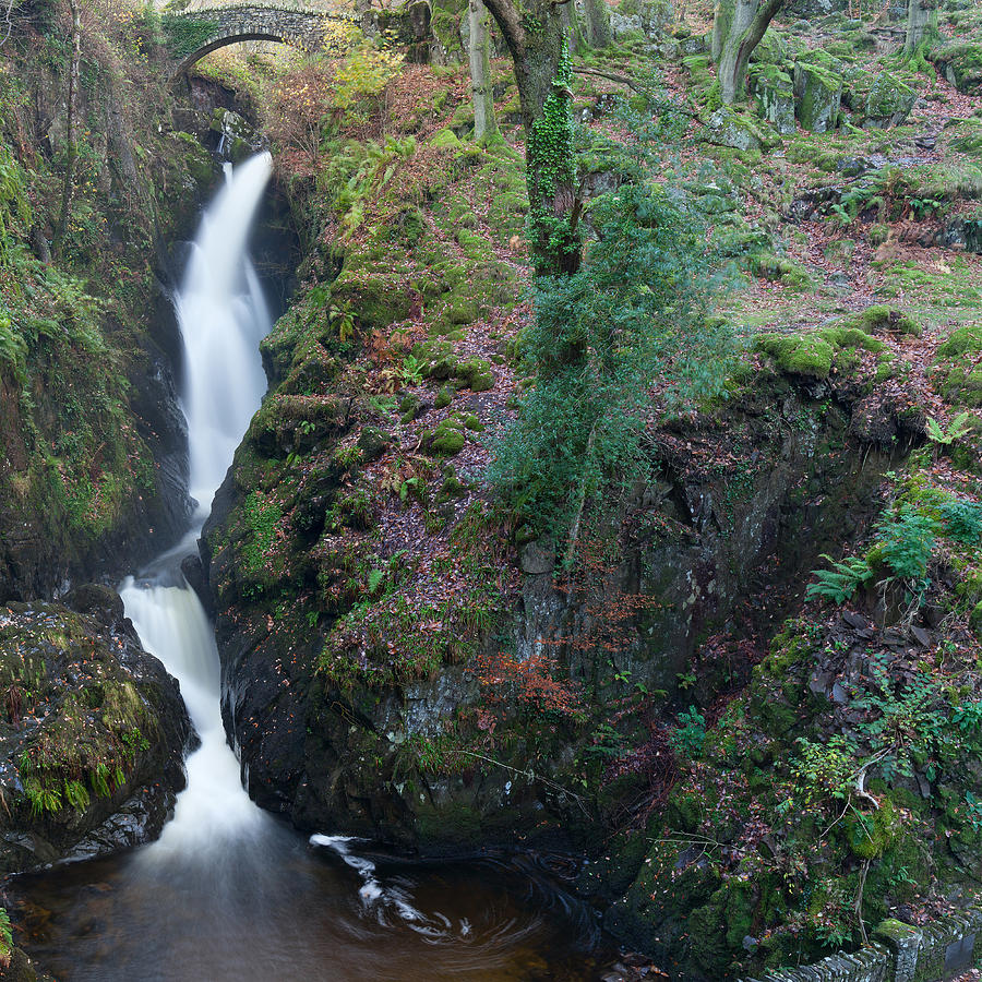 Aira Force by Nick Atkin