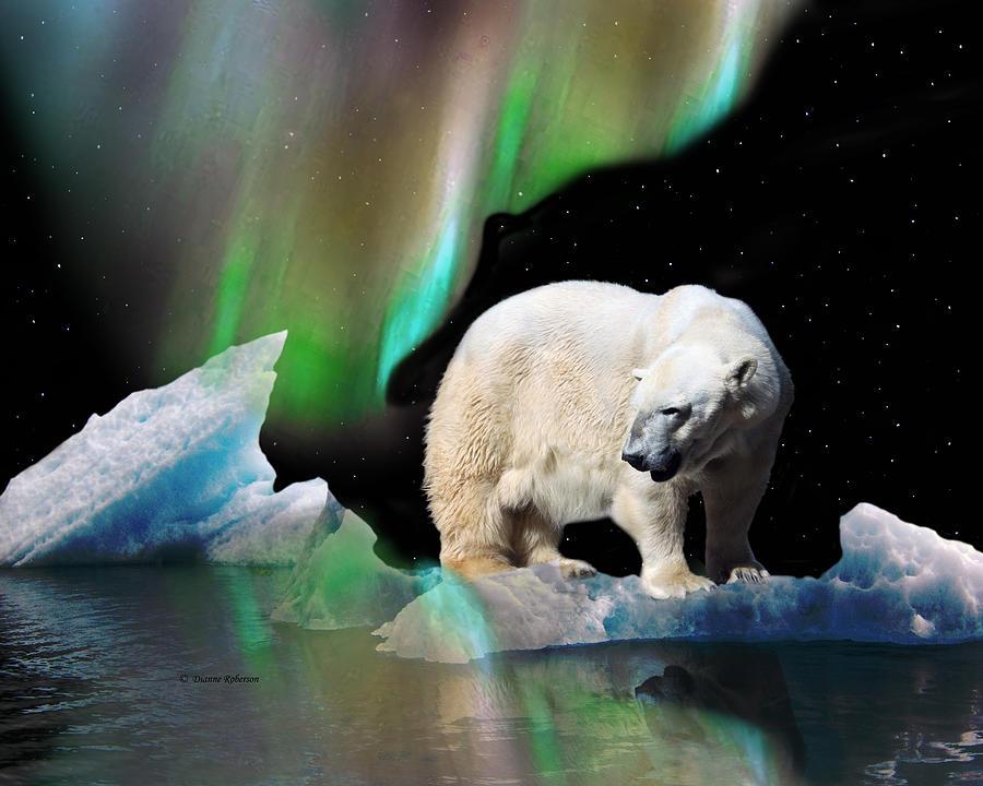 Добрым, картинки белые медведи северное сияние мультяшные