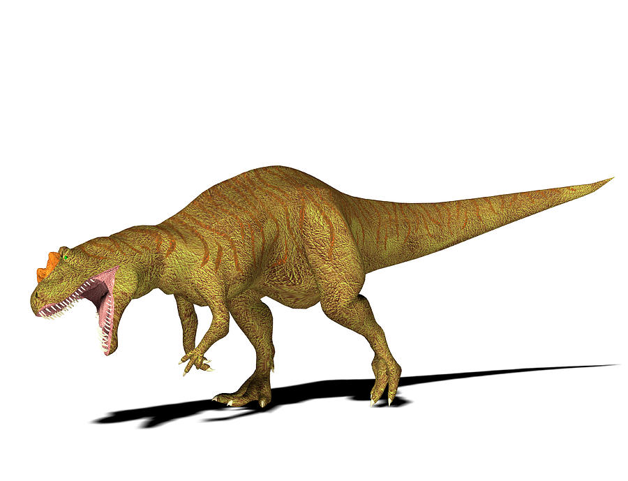 Nobody Photograph - Allosaurus Dinosaur by Friedrich Saurer