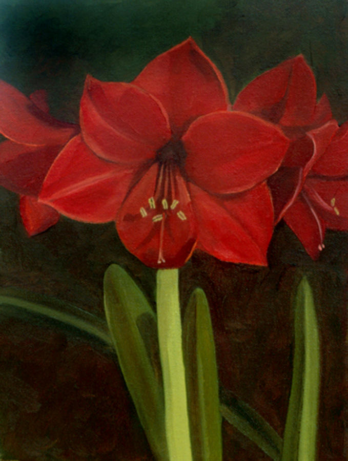 Amaryllis Painting - Amaryllis by Nancy Griswold
