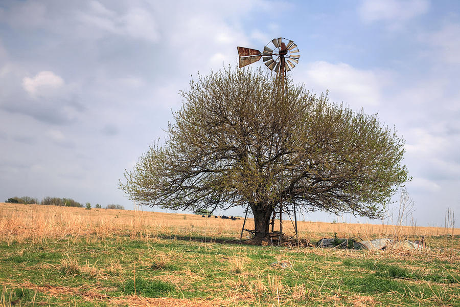 Kansas Photograph - Americana by JC Findley