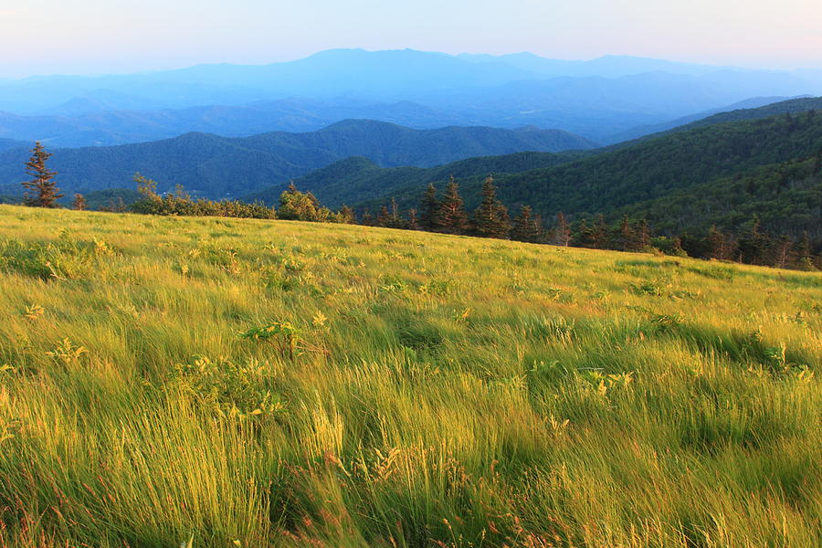 roan mountain sex chat Looking for an whores / hooker in roan mountain here you will find men and women for hot without paying money.