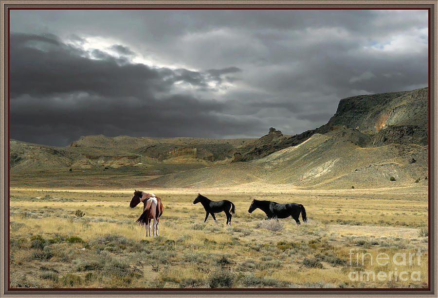 Approaching Storm by Bobbie Turner