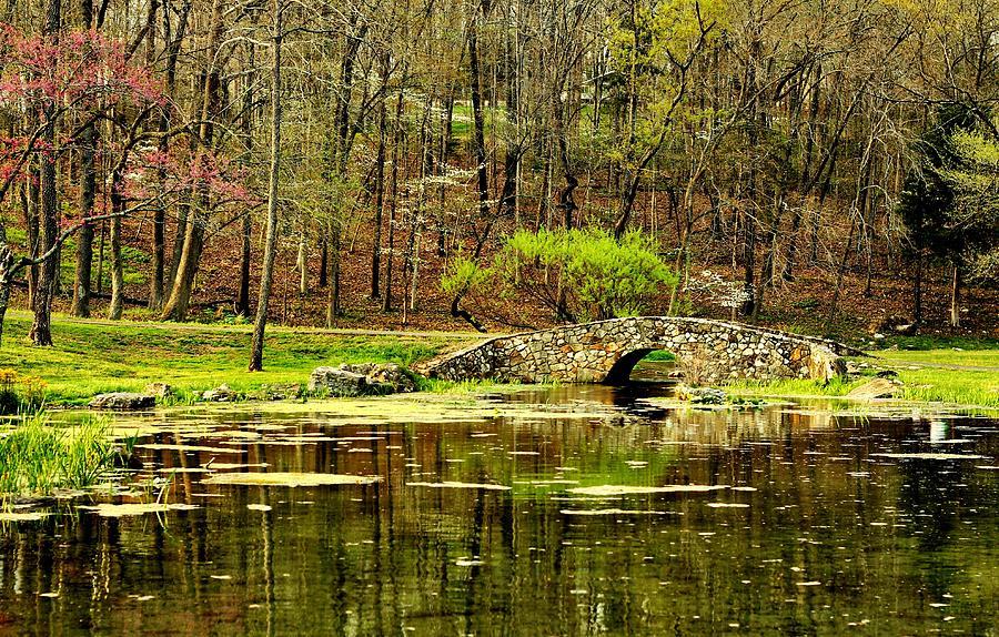 Arkansas Photograph - Arkansas Tranquility by Benjamin Yeager