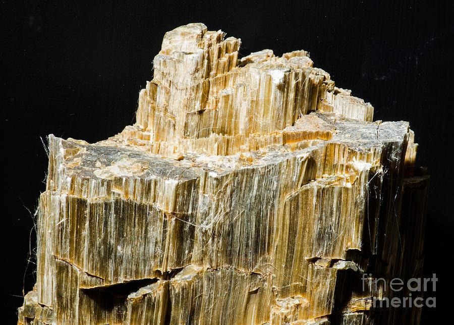 Nature Photograph - Asbestos by Millard H. Sharp