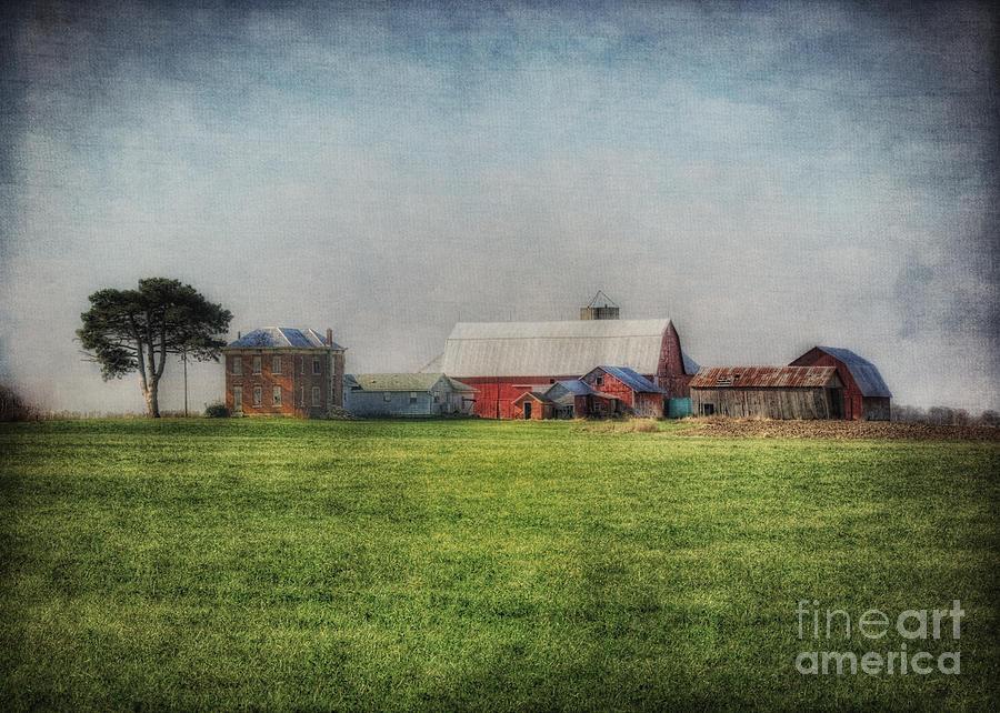 Aunt Flossie's Farm by Pamela Baker