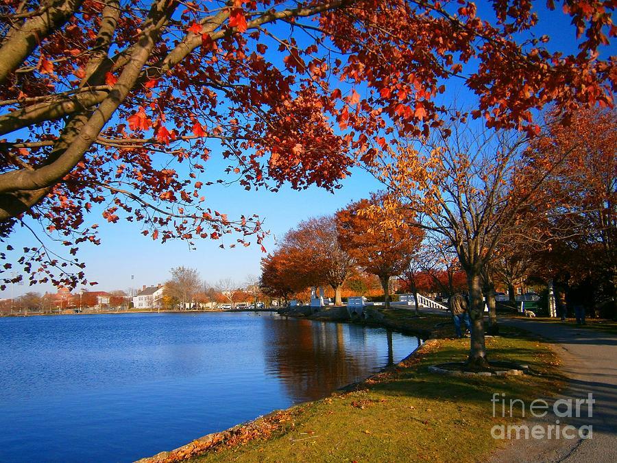 Autumn Landscape Pyrography - Autumn At Argyle Park by Holly Martinson