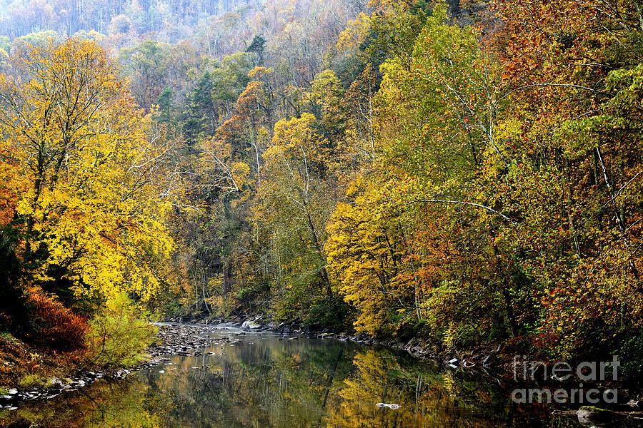 Elk River Photograph - Autumn Elk River by Thomas R Fletcher
