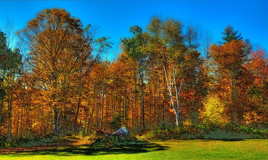 Autumn Landscape Photograph