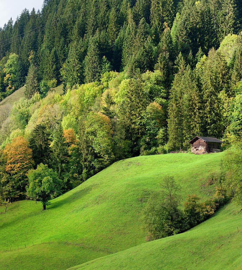 Autumn Landscape In Bernese Oberland Photograph by Pidjoe