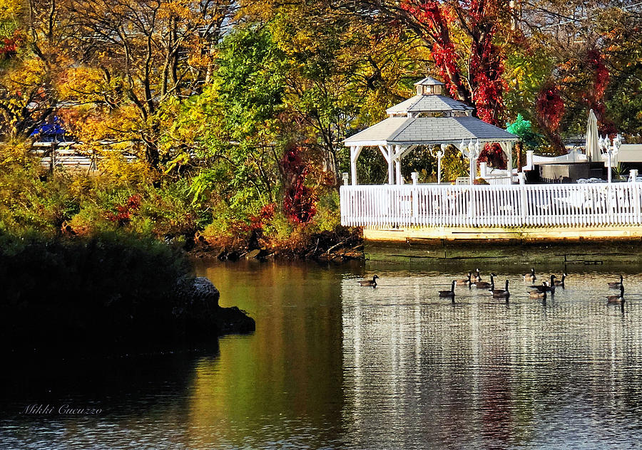 Season Photograph - Autumn Scene by Mikki Cucuzzo