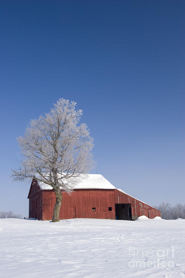 Seasons Photograph - Barn in Winter by Jim West