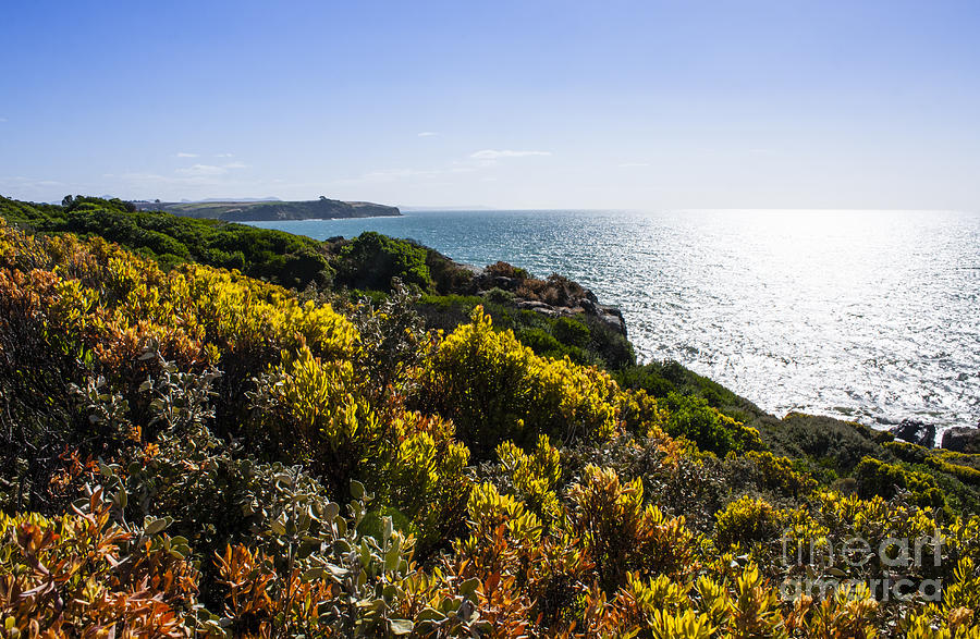 Bass Strait Photograph - Bass Strait Ocean Landscape In Tasmania by Jorgo Photography - Wall Art Gallery