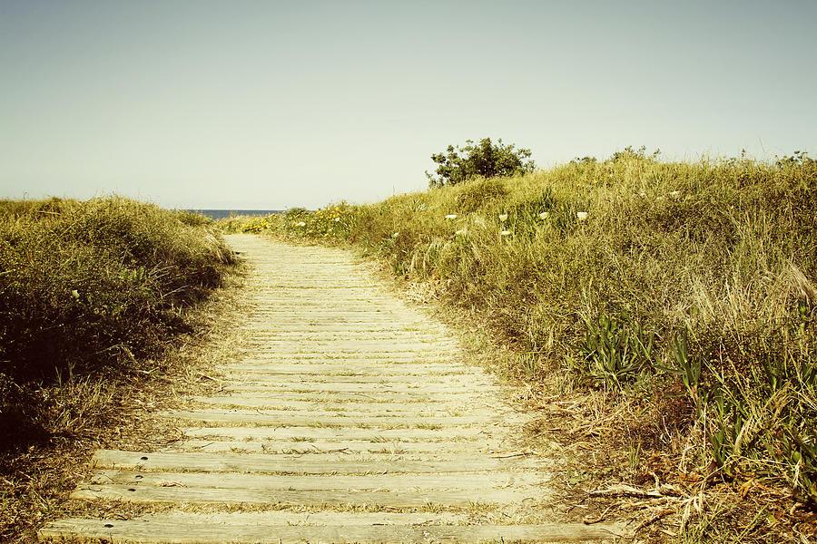 Beach Photograph - Beach Trail by Les Cunliffe