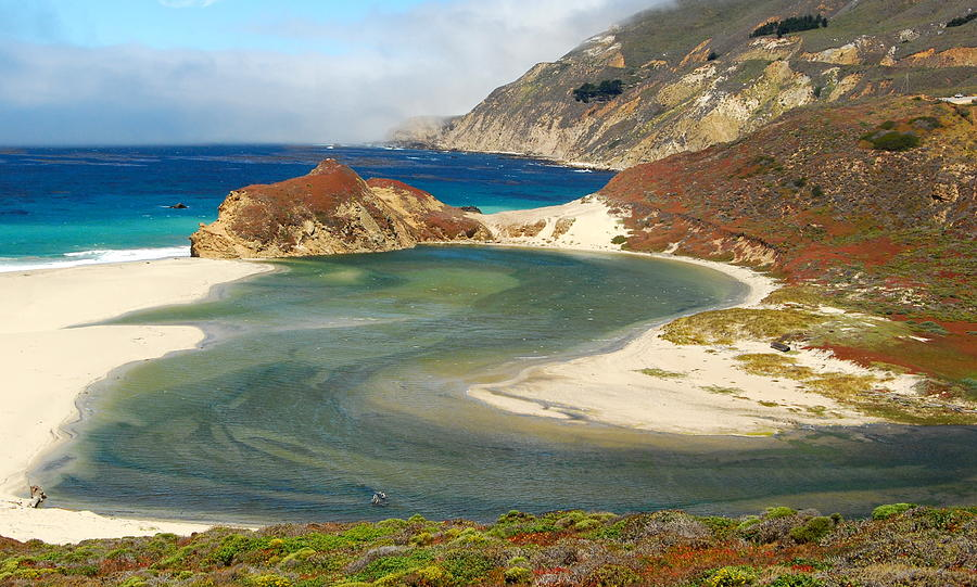 Big Sur Photograph - Big Sur by Mamie Gunning