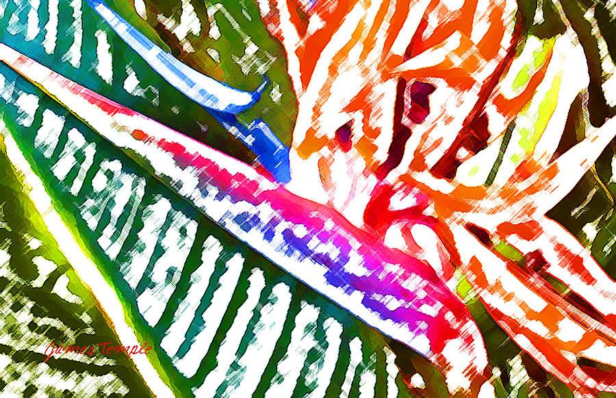 Bird Of Paradise Digital Art - Bird of Paradise Painted by James Temple