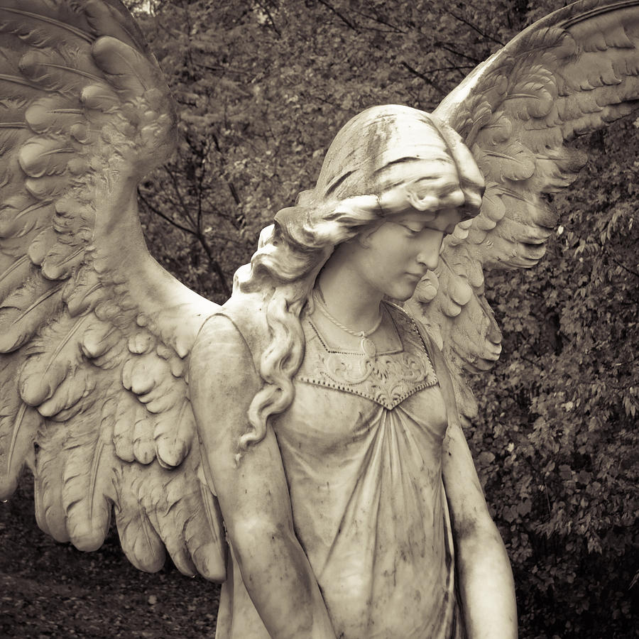 Angel Photograph - Black And White Angel by Patsy Zedar
