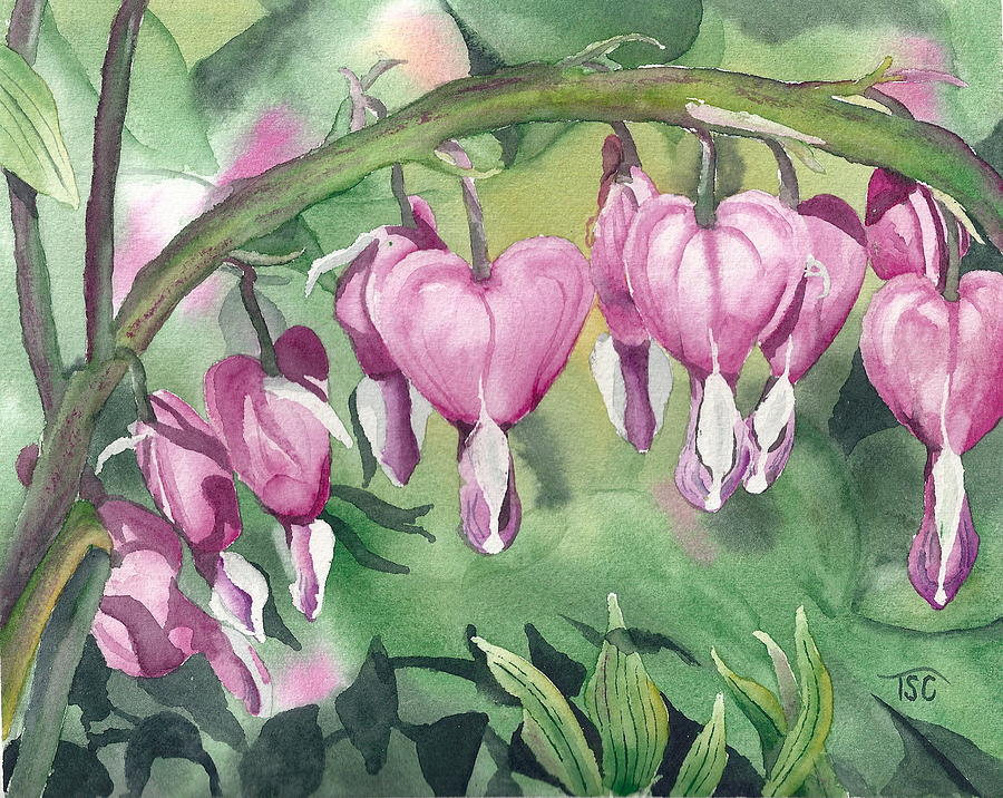 Valentine's Day Painting - Bleeding Hearts by Tammy Crawford