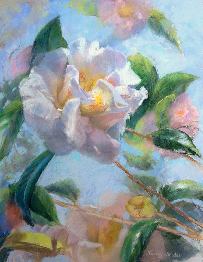 Still Life Drawing - Blooming Flowers by Nancy Stutes