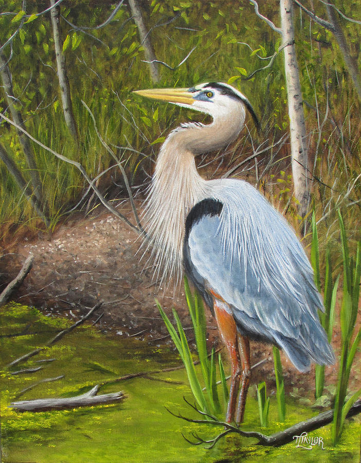 Blue Heron Painting by Tammy Taylor