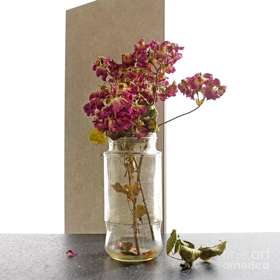 Cut Out Photograph - Bouquet by Bernard Jaubert