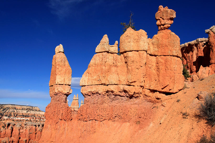 Utah Photograph - Bryce Canyon by Aidan Moran