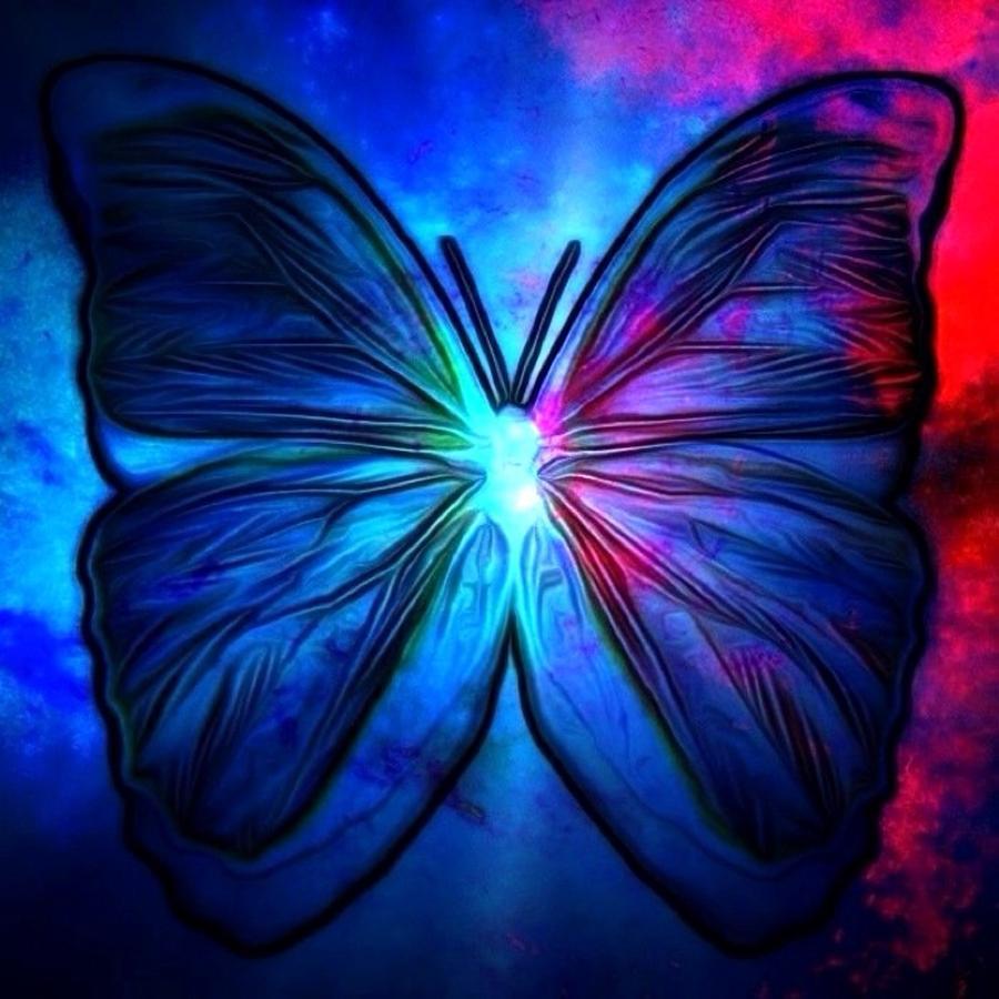 Butterfly Digital Art by T T