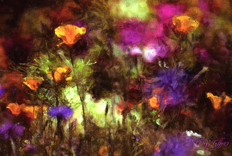 California poppies by George Tuffy