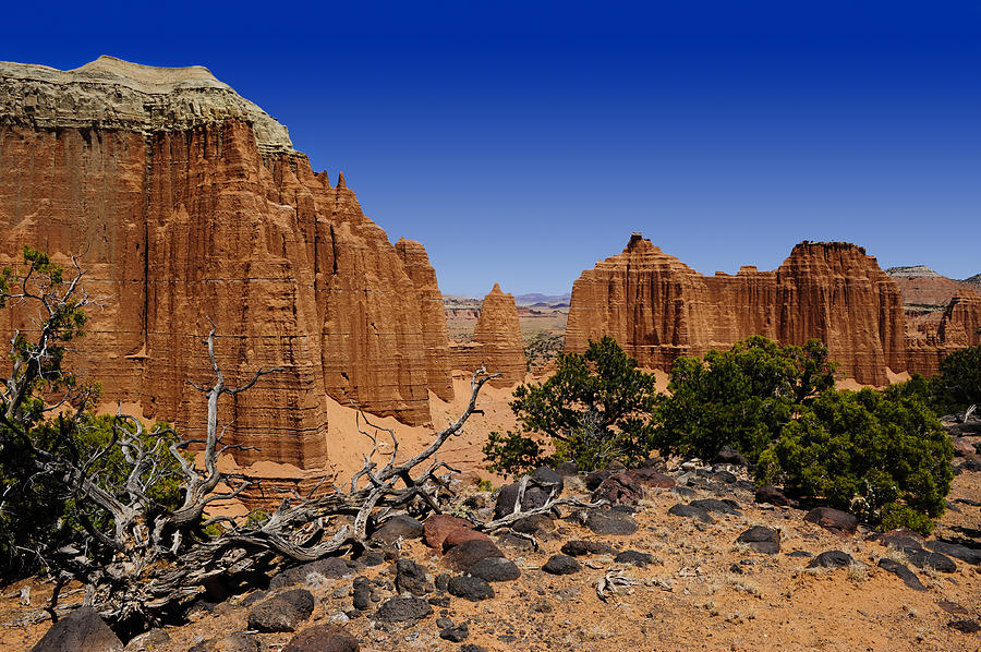 Capital Photograph - Capital Reef by Don and Bonnie Fink