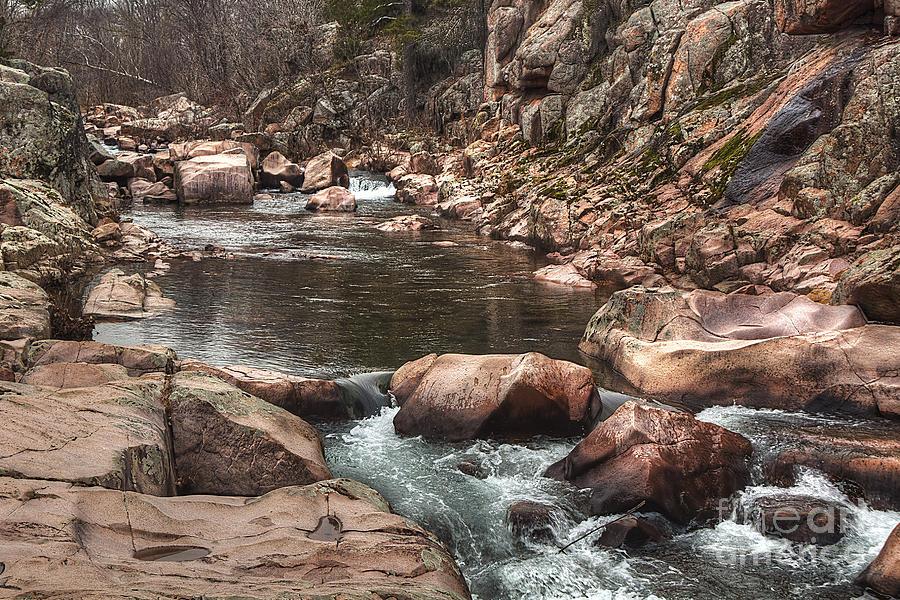 2011 Photograph - Castor River by Larry Braun