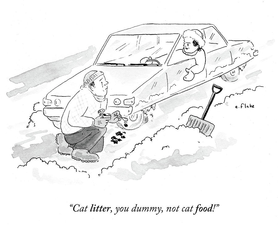 Cat Litter Drawing - Cat Litter You Dummy Not Cat Food by Emily Flake
