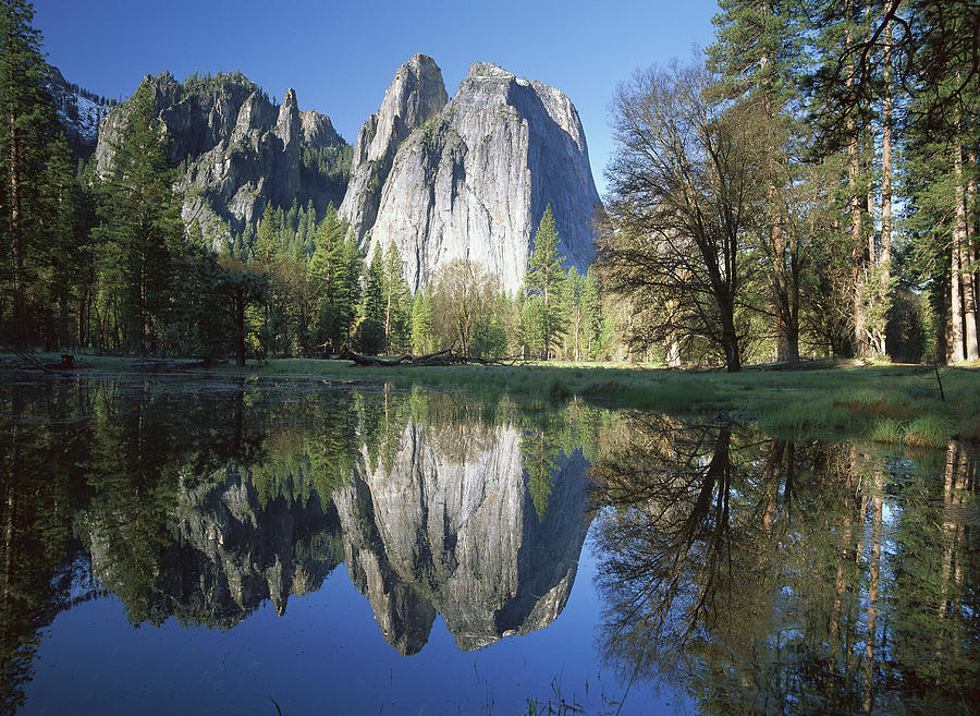 Cathedral Rock And The Merced River Photograph by Tim Fitzharris