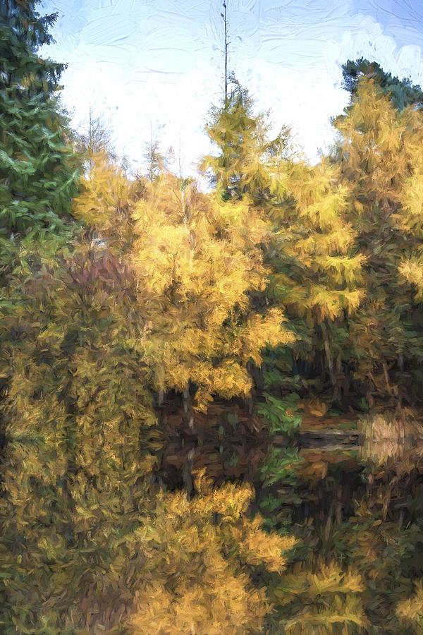 Landscape Photograph - Cezanne Style Digital Painting Beautiful Vibrant Autumn Woodland Reflecions In Calm Lake Waters by Matthew Gibson
