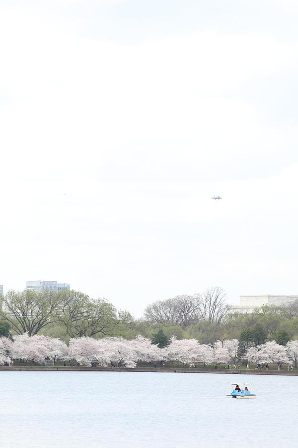 America Photograph - Cherry Blossoms - Washington Dc - 011320 by DC Photographer