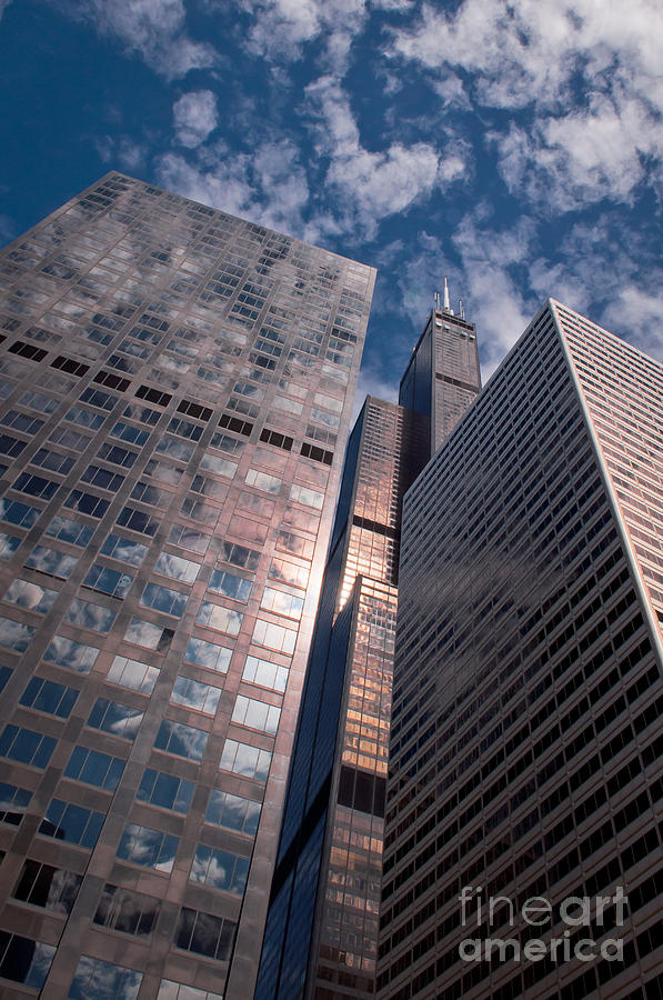 Chicago Downtown Photograph - Chicago Downtown Buildings by Dejan Jovanovic