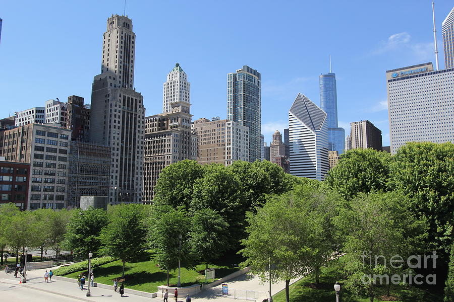 Chicago Photograph - Chicago In Summer by Michael Paskvan