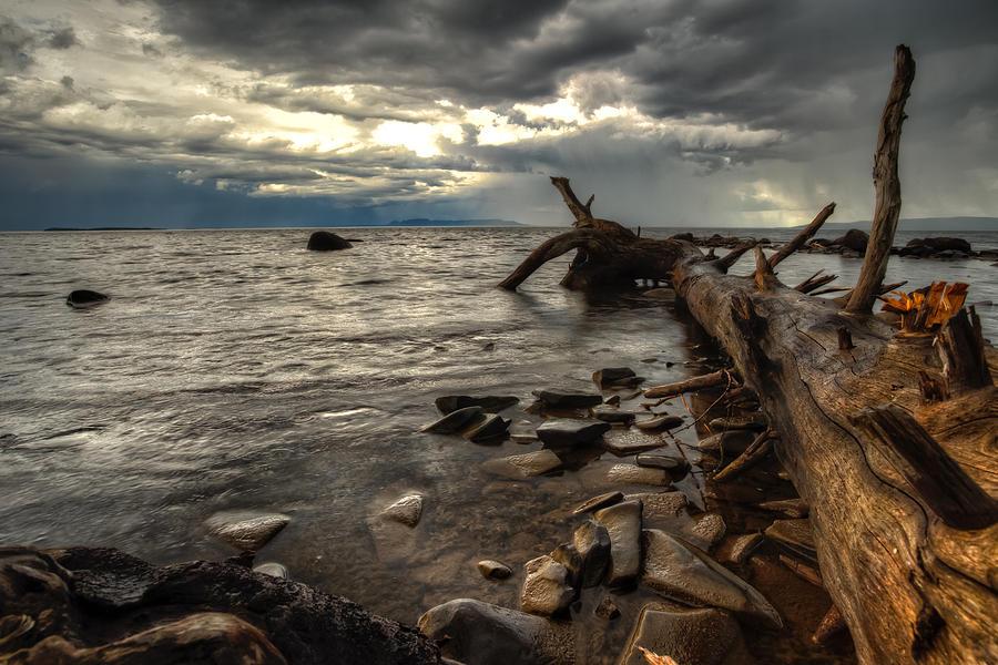 Canada Photograph - Chippewa  by Jakub Sisak