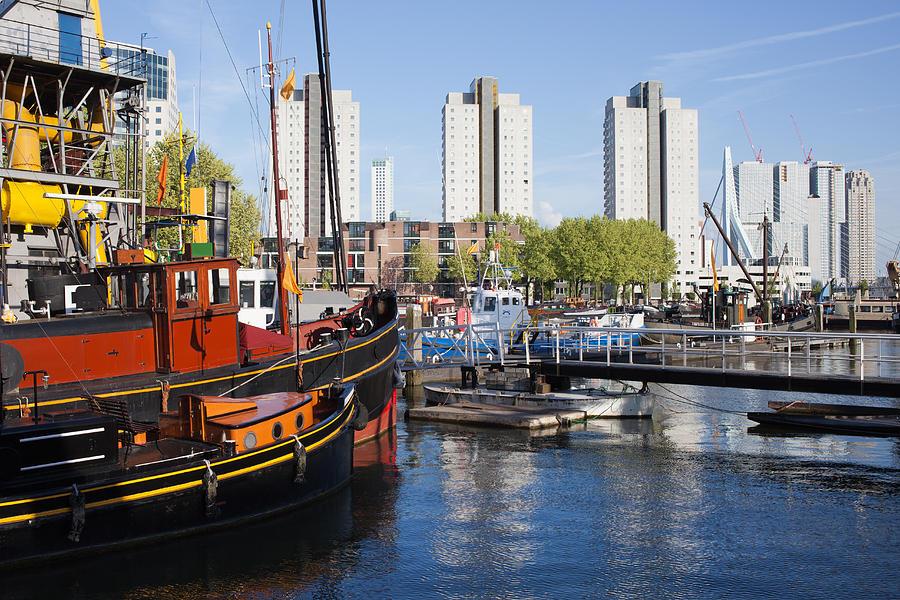 Rotterdam Photograph - City Of Rotterdam Cityscape In Netherlands by Artur Bogacki