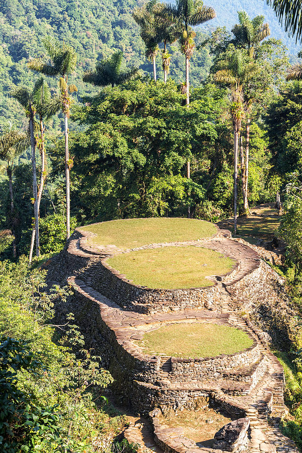 Colombia Photograph - Ciudad Perdida In Colombia by Jess Kraft