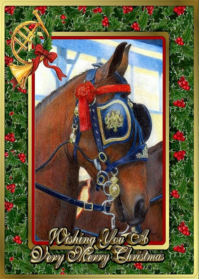 Christmas Horse Drawing.Cleveland Bay Horse Christmas Card By Olde Time Mercantile