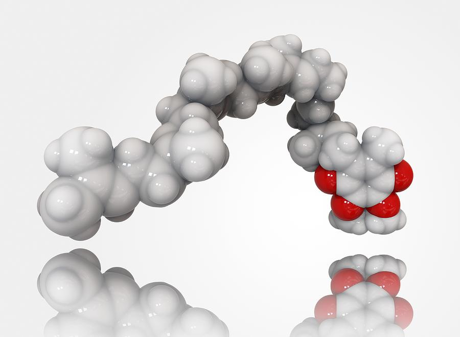 Ubiquinone Photograph - Coenzyme Q10 Molecule by Science Photo Library