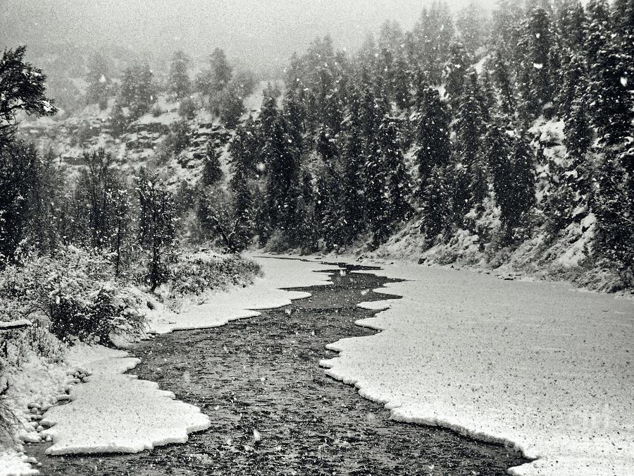 Colorado Winter by Karla Weber