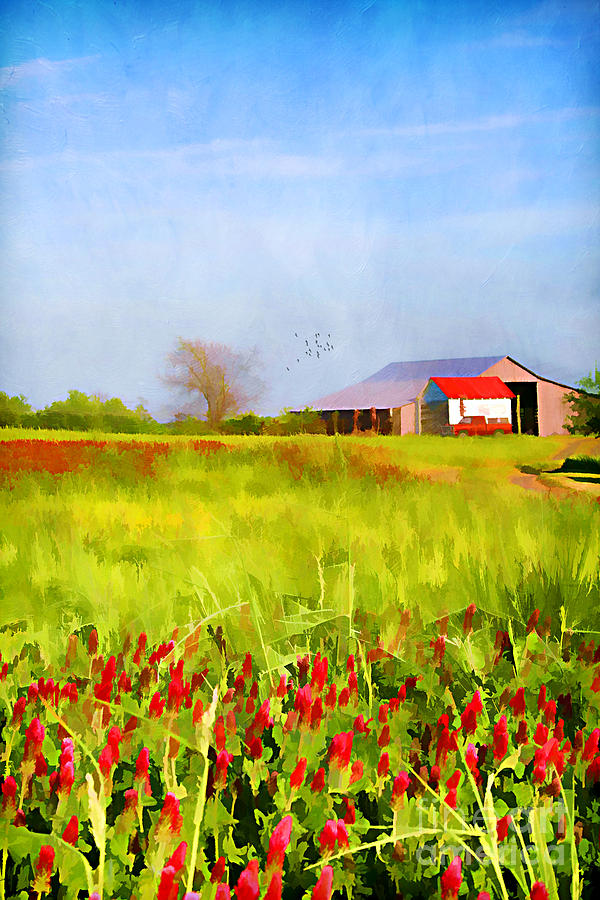 Agriculture Photograph - Country Kind Of Spring by Darren Fisher