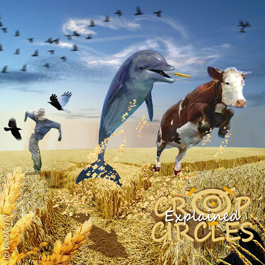 Dolphin Digital Art - Crop Circles Explained by Douglas Martin