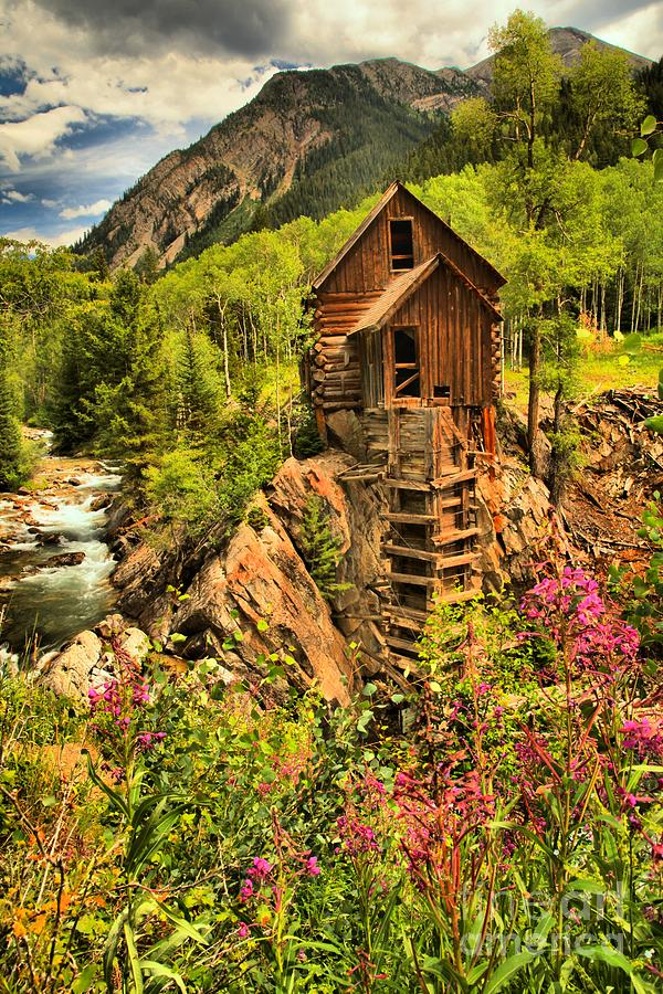 Power Plant Photograph - Crystal Mill Wildflowers by Adam Jewell