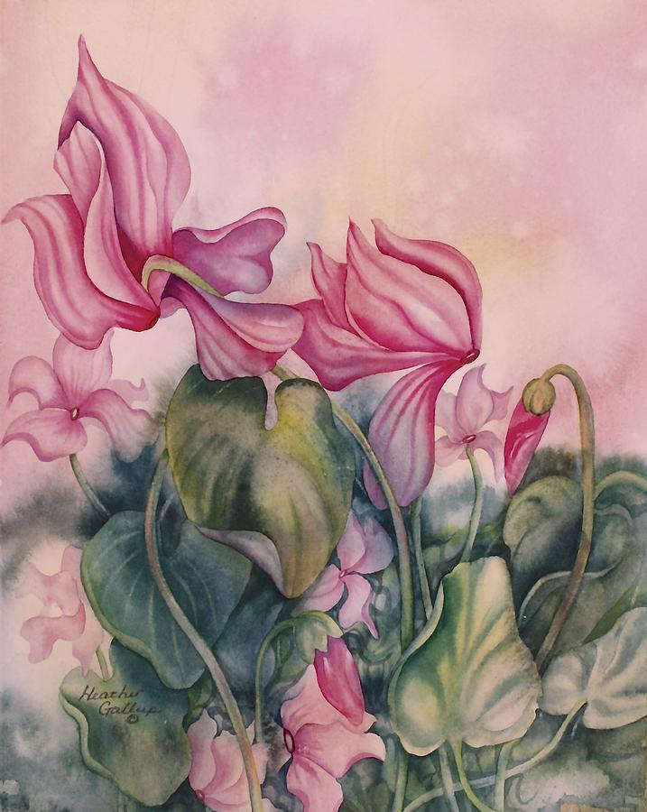 Pink Flowers Painting - Cyclamen by Heather Gallup