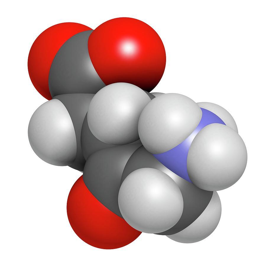 Acid Photograph - D-aminolevulinic Acid Ala Drug Molecule by Molekuul